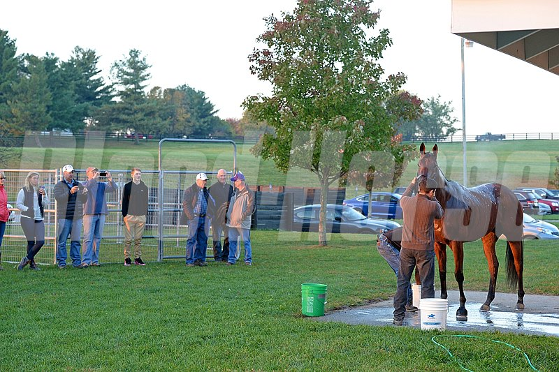 Caption: Beholder getting a bath as trainer Richard Mandella, right, talks with breeder Fred Mitchell (third right), and fans watch. 