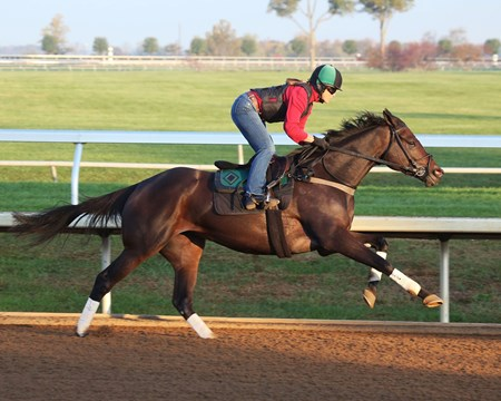 Frivolous - Morning Workout - Keeneland Race Course - 102315