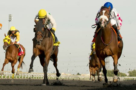Jockey Jesse Campbell guides Caren to victory in the Victorian Queen Stakes at Woodbine Racetrack.