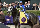 "Breeders' Cup Dirt Mile winner Liam's Map<br><a target=""blank"" href=""http://photos.bloodhorse.com/BreedersCup/2015-Breeders-Cup/Las-Vegas-Breeders-Cup-Dirt-Mi/i-XvcD336"">Order This Photo</a>"
