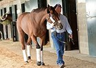 "Beholder<br><a target=""blank"" href=""http://photos.bloodhorse.com/BreedersCup/2015-Breeders-Cup/Works/i-r53txLd"">Order This Photo</a>"