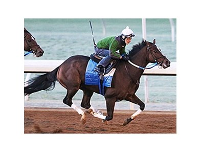 Defending Breeders' Cup Distaff (gr. I) winner Untapable breezed five furlongs in 1:01 1/5 Oct. 18 at Keeneland.