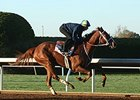 I'm a Chatterbox worked five furlongs in 1:00 2/5 on October 17.