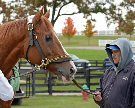 Caption:Lea after work