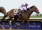 Nyquist wins the Breeders' Cup Juvenile.