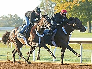 Bradester (inside) - Keeneland, October 17, 2015.
