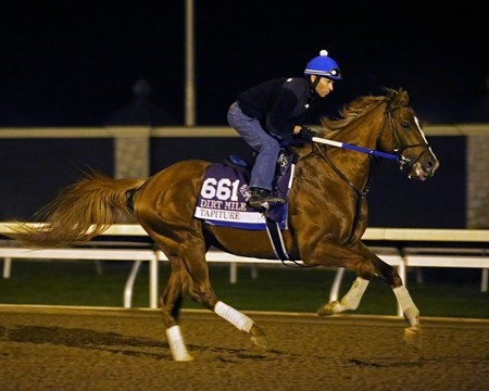 Tapiture - Morning Training - Keeneland Race Course - KEE - 102315