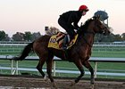 "Gleneagles<br><a target=""blank"" href=""http://photos.bloodhorse.com/BreedersCup/2015-Breeders-Cup/Works/i-dDJdN73"">Order This Photo</a>"