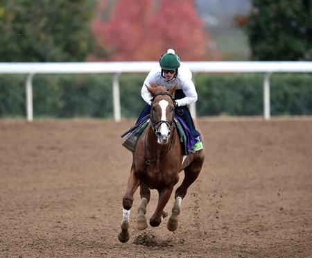 (October 26, 2015) Lea works a half mile in :47 2/5 Monday morning at Keeneland...