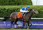 Tepin winning the Oct. 31 Breeders' Cup Mile at Keeneland