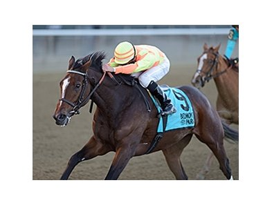 "America takes the Turnback the Alarm Handicap.<br><a target=""blank"" href=""http://photos.bloodhorse.com/AtTheRaces-1/At-the-Races-2015/i-Vsc8LNG"">Order This Photo</a>"