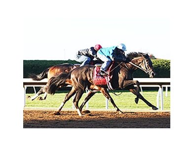 Conquest Daddyo (outside) went five furlongs in 1:00 4/5 in company with fellow Mark Casse trainee Sky Fire.