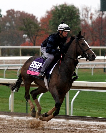 Last Waltz (Breeders' Cup Juvenile Fillies Turf) on the track at Keeneland on October 28, 2015. Photo By: Chad B. Harmon