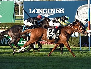 Messi rallies to win the Knickerbocker Stakes Oct. 10 at Belmont Park