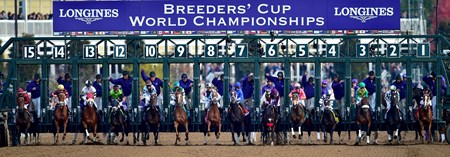 Horses break from the gate in the Breeders' Cup Distaff (gr. I).