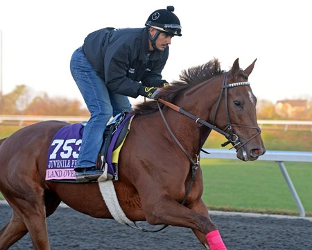 Caption: Land Over Sea