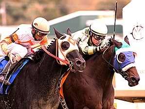 Jack's in the Deck (left) upsets Ben's Cat to win the Maryland Million Sprint.