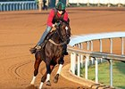 Frivolous Tunes Up for Distaff Run