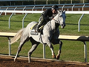 Bailoutbobby - Keeneland, October 16, 2015