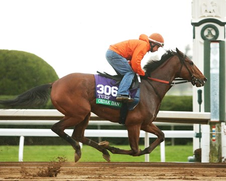 Ordak Dan - Morning Workout - Keeneland Race Course - 102415