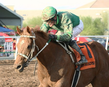 Absolutely Cool takes the Bienvenidos Stakes at Turf Paradise in Phoenix, Arizona.
