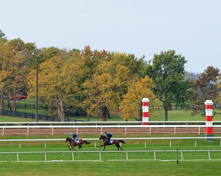 Caption: Ruby Notion, left, and Sheikh of Sheikhs