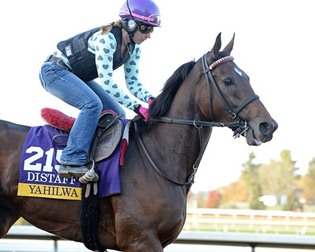 Caption: Yahilwa