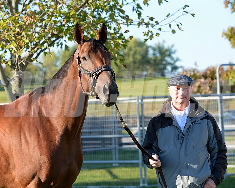 Beholder with Richard Mandella.