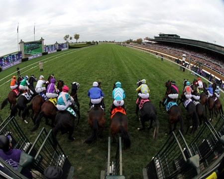 The field for the Breeders' Cup Juvenile Turf (gr. IT) breaks from the starting gate at Keeneland on October 30, 2015.