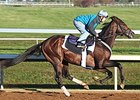 Greenpointcrusader works at Keeneland Oct. 19.