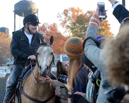Caption: Adoring fans admire Smokey with Jimmy Barnes up. 