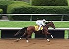 Breeders' Cup News Update for Monday Oct. 26