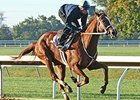 I'm a Chatterbox worked four furlongs in :47 1/5 at Keeneland on October 11.