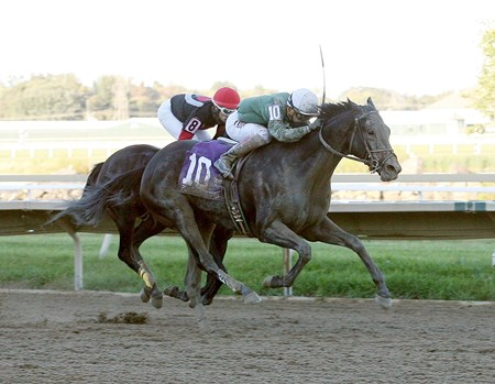 Bound breaks free in the $100,000 Plum Pretty Stakes at Parx Racing in Bensalem, Pennsylvania.