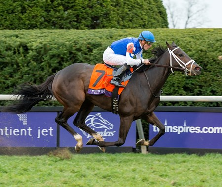 Tepin delivered her second straight monster performance in a grade I turf race at Keeneland, this time beating males in the $2 million Breeders' Cup Mile (gr. IT).