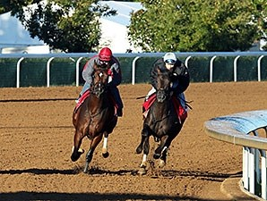 Conquest Daddyo (inside) and Sky Fire (outside) - Keeneland, October 14, 2015.