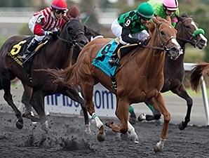 Cactus Kid wins the Ontario Fashion Stakes Oct. 18.