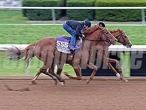 Judy the Beauty worked five furlongs in :59 4/5 at Keeneland Race Course Oct. 26.