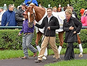Wise Dan - Keeneland, October 3, 2015.