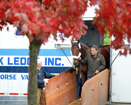 Caption: American Pharaoh arrives at Keeneland for the Breeders' Classic on Oct. 27, 2015.