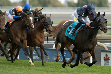 Jockey Ryan Moore guides Curvy to victory in the $500,000 E.P. Taylor Stakes (gr. IT) at Woodbine Racetrack.