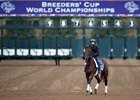 2015 Breeders' Cup Week