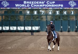 (October 26, 2015) Juvenile contender Greenpointcrusader jogging by the Keeneland starting gate Monday morning...