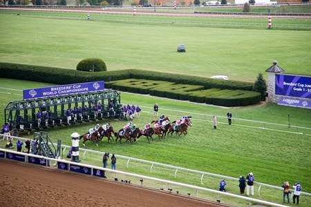 Start of the Breeders' Cup Juvenile Fillies Turf (gr. IT).