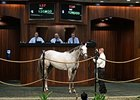 Puddifoot, a 4-year-old Red Giant filly, brought $120,000.