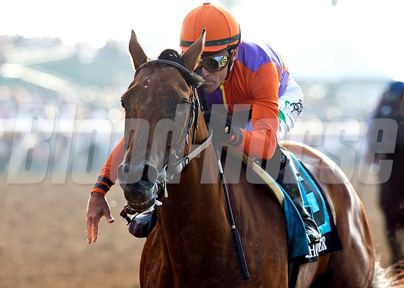 Spendthrift Farms' Beholder, a 5-year-old mare,  and jockey Gary Stevens dusted the boys to easily win the Grade I $1,000,000 TVG Pacific Classic Saturday, August 22, 2015 at Del Mar Thoroughbred Club, Del Mar, CA.   ©Benoit Photo