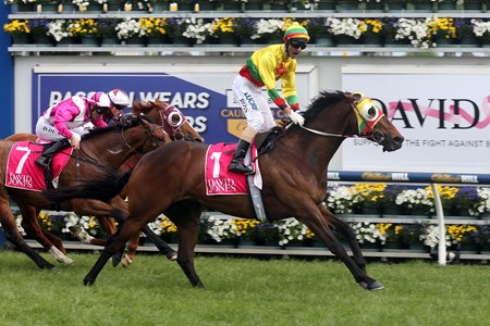 Lucky Hussler and jockey Glen Bosshe overpower the rest if the field in the Toorak Handicap in Australia.