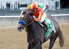 Pretty N Cool will return to sprinting Jan. 2 in the Santa Ynez Stakes.
