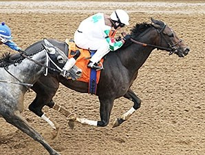 Fioretti wins the 2015 Thoroughbred Club of America Stakes.