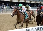 "Palace won the Hudson Handicap Oct. 24 at Belmont Park.<br><a target=""blank"" href=""http://photos.bloodhorse.com/AtTheRaces-1/At-the-Races-2015/i-nJj6vBg"">Order This Photo</a>"